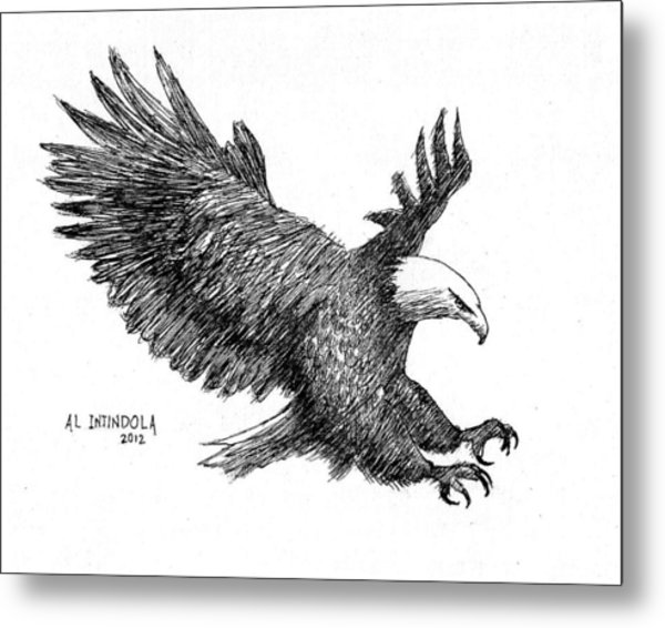 Pen And Ink Bald Eagle Metal Print