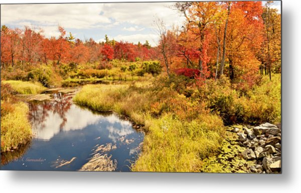 Pennsylvania Autumn Pocono Mountain Stream Metal Print