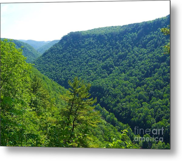 Pennsylvania Grand Canyon 1 Metal Print