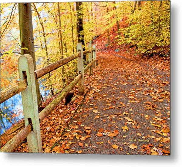 Pennypack Trail Philadelphia Fall Metal Print
