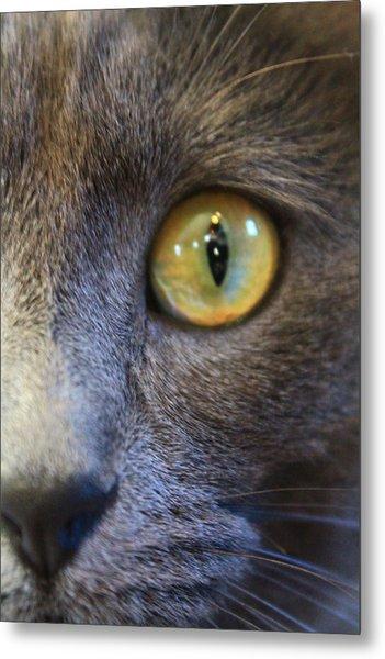 Pepper's Eye Metal Print