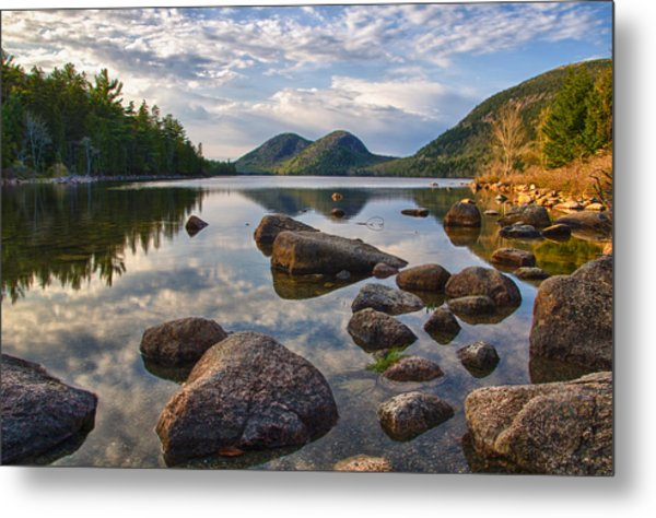 Perfect Pond Metal Print
