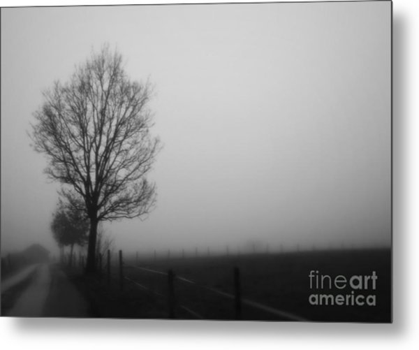 Perfect Sense II Metal Print