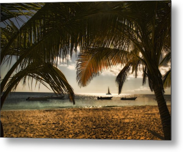 Perhaps A Slower Pace Of Life ... Metal Print