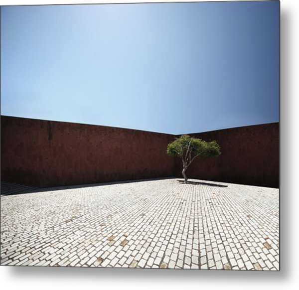 Perspective View On Square With Tree Metal Print