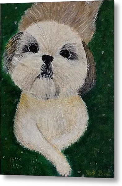Pet Dog Metal Print by Kat Poon