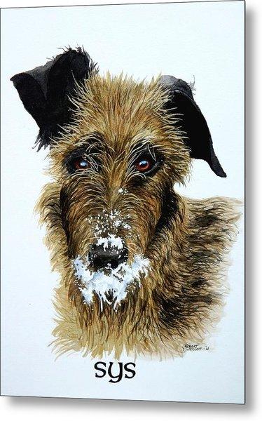 Pet Portraits Now Available Metal Print