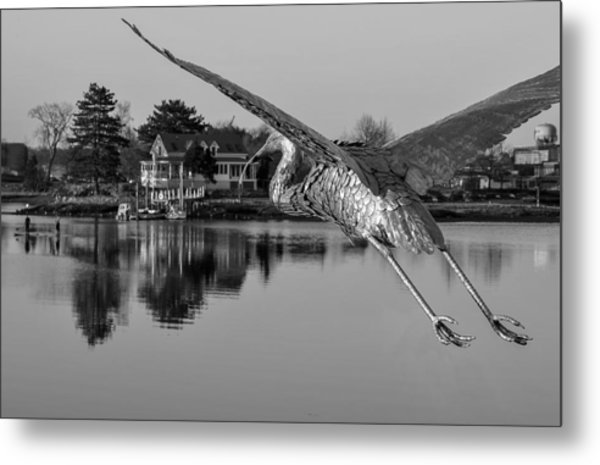 Pewter Great Blue Heron Metal Print