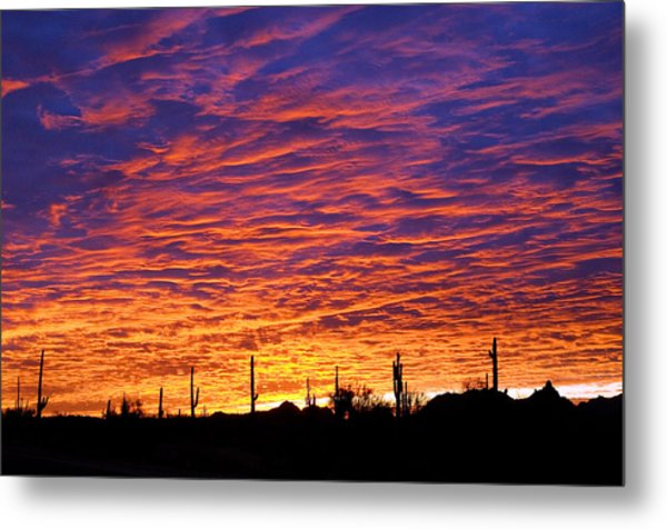 Phoenix Sunrise Metal Print