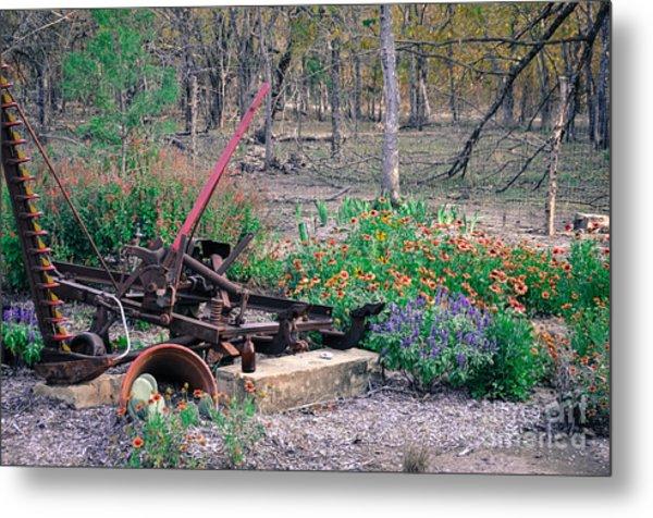 Pickle Creek Ranch Botanical Garden Metal Print