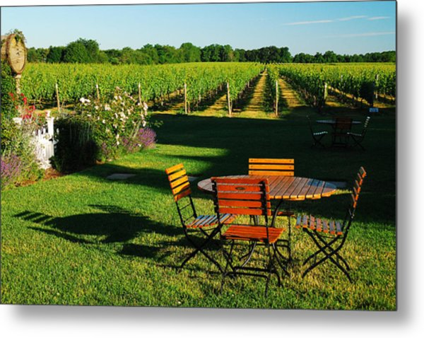 Picnic In The Vineyard Metal Print