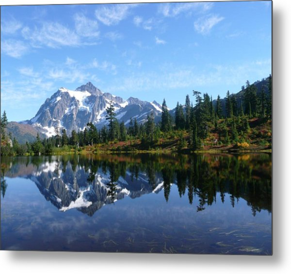 Metal Print featuring the photograph Picture Lake by Priya Ghose
