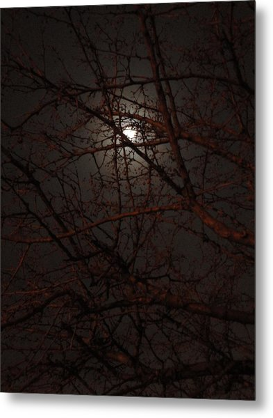 Pieces Of The Moon Metal Print by Guy Ricketts