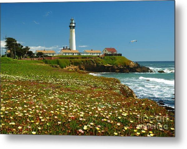 Pigeon Lighthouse Metal Print