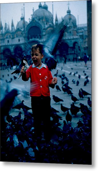 Pigeons Galore 1961 Metal Print by Cumberland Warden