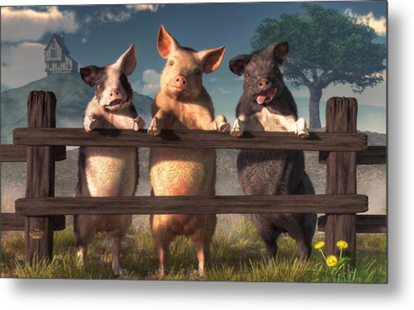 Pigs On A Fence Metal Print