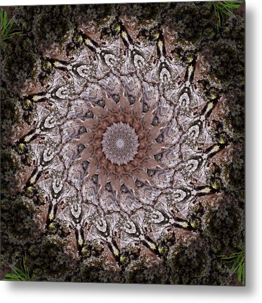 Pine Bark Mandala #1 Metal Print