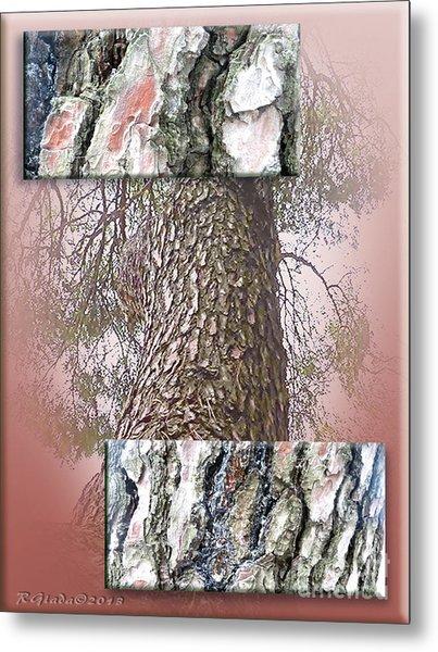 Pine Bark Study 1 - Photograph By Giada Rossi Metal Print