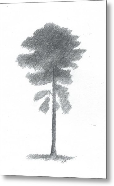 Pine Tree Drawing Number Four Metal Print by Alan Daysh