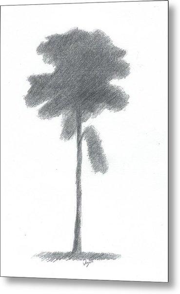 Pine Tree Drawing Number Three Metal Print by Alan Daysh