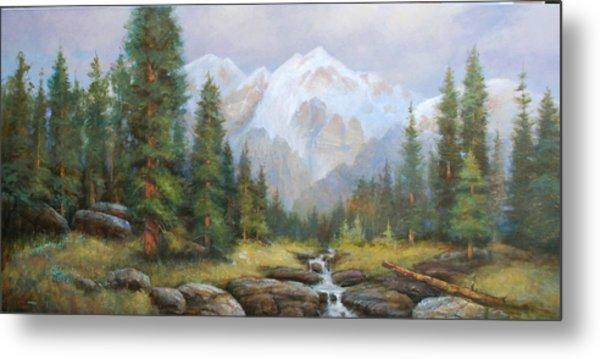 Pine Valley Metal Print