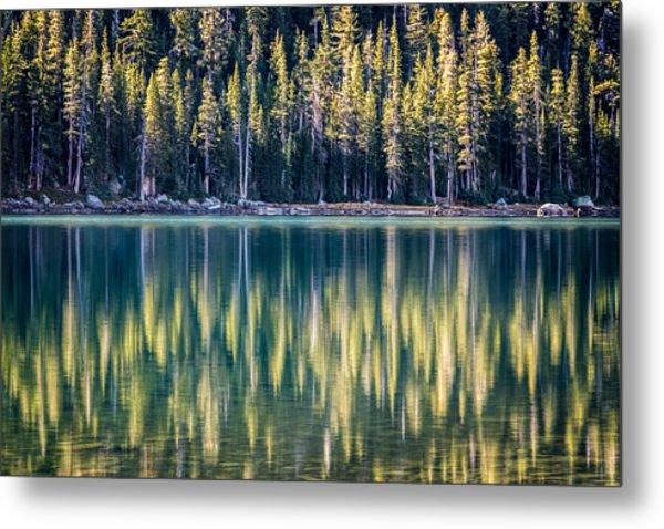 Pines Reflected In Tenaya Lake Metal Print