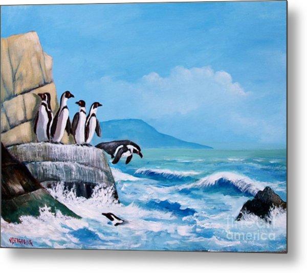 Pinguinos De Humboldt Metal Print