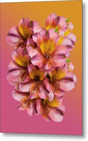 Pink And Gold Metal Print by Delores Knowles