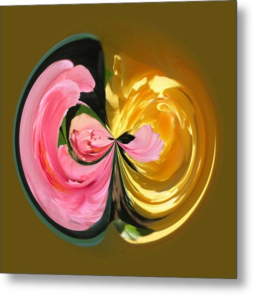 Pink And Yellow Hibiscus 801 Metal Print