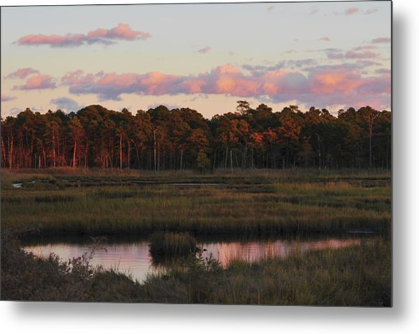 Pink Clouds Metal Print