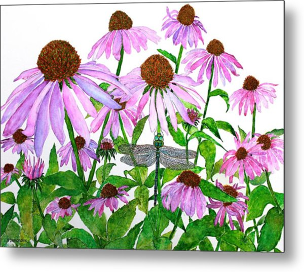 Pink Cone Flowers And Dragonfly Metal Print