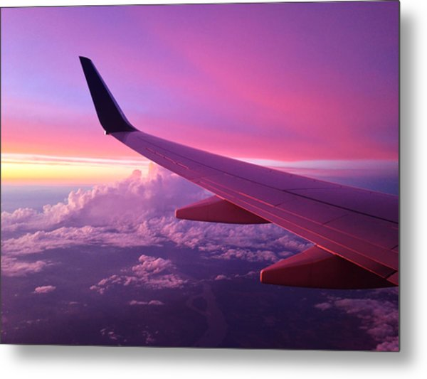 Pink Flight Metal Print