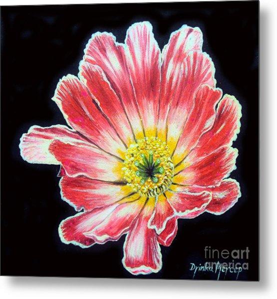 Pink Flower Painting Oil On Canvas Metal Print by Drinka Mercep