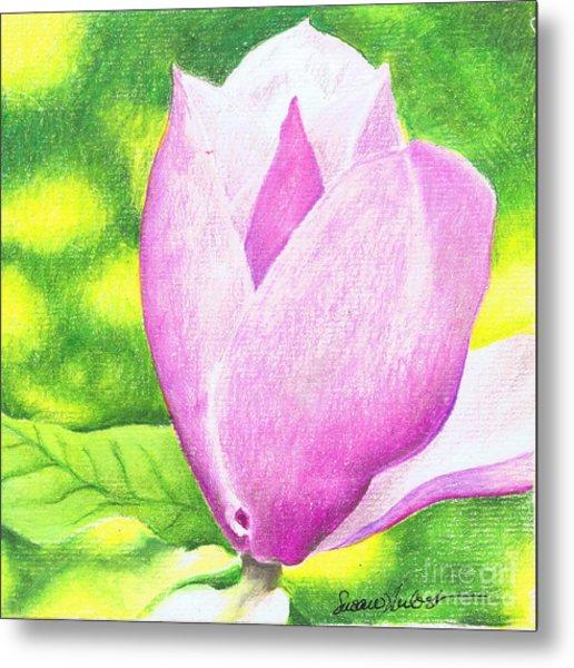 Pink Magnolia Metal Print by Susan Herbst