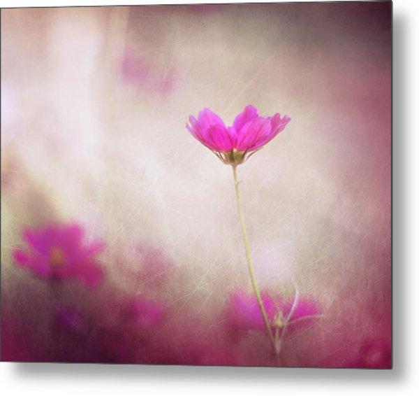 Pink Nouveau Metal Print