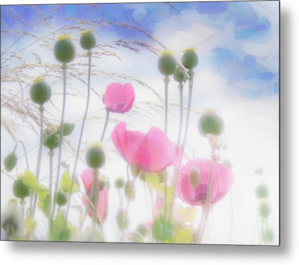 Pink Poppies In A Paper Tissue Sky Metal Print