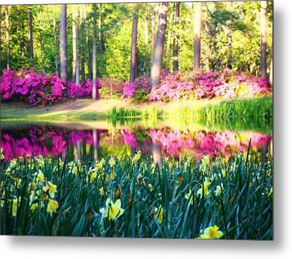 Pink Reflections By Jan Marvin Metal Print