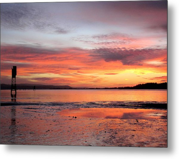 Pink Reflections Metal Print