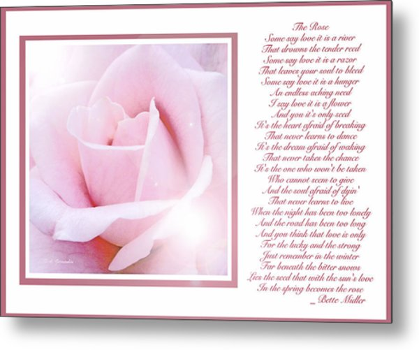 Pink Rose And Song Lyrics Metal Print