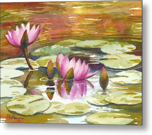 Pink Waterlilies Metal Print