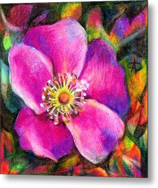 Pink Wild Flower. Alberta Flood Project Metal Print