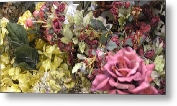 Pinkel Rose Metal Print