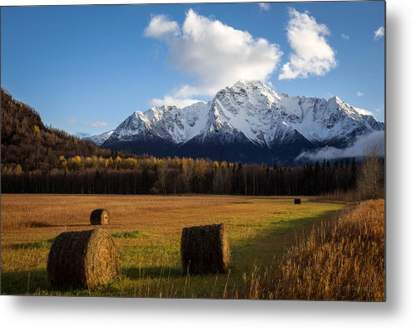 Metal Print featuring the photograph Pioneer Hay Fields by Tim Newton
