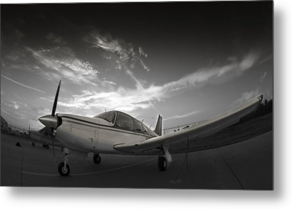 Piper Arrow Metal Print