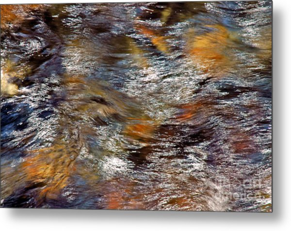 Pisgah Forest - Liquid Color Metal Print