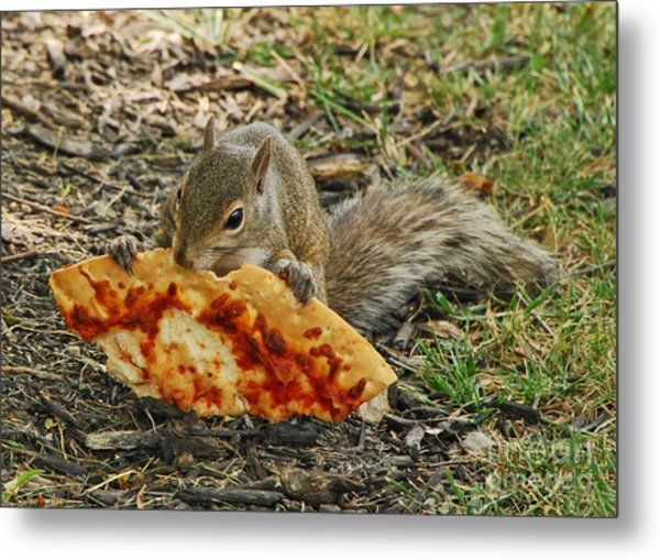 Pizza For  Lunch Metal Print