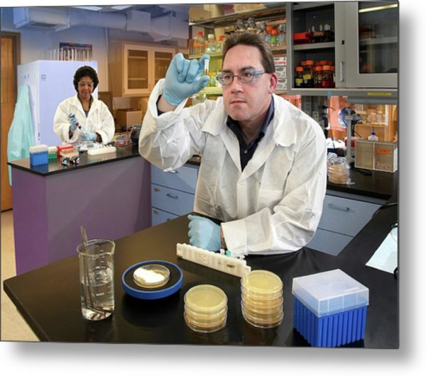 Plague Bacteria Detection Research Metal Print