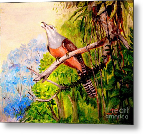 Plaintive Cuckoo Metal Print