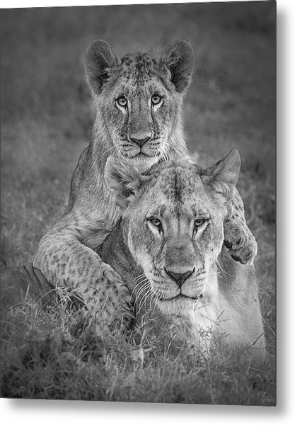 Playtime With Mama! Metal Print