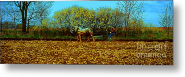 Plow Days Freeport Illinos   Metal Print
